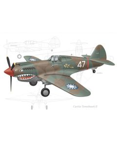 "Curtiss P-40B ""Flying Tigers"""