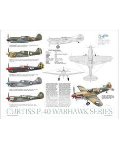 P-40 Data Poster